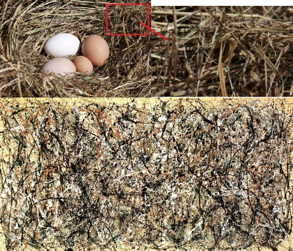 Comparación de Pollock del Moma de NY con nido